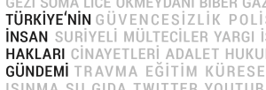 tihg_logo